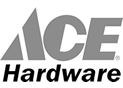 ace-logo2